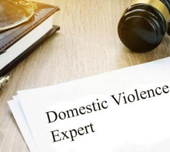 DV CASES Require DV Experts: DUH!